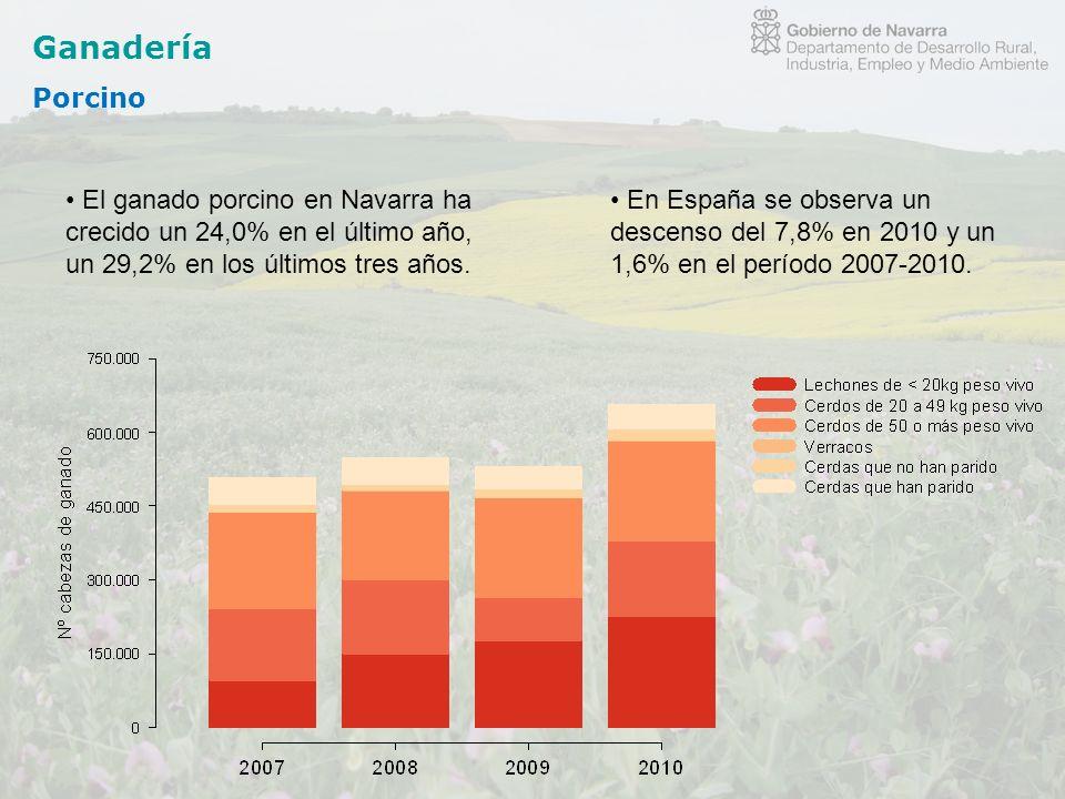 Ganadería Porcino El ganado porcino en Navarra ha crecido un 24,0% en el último año, un 29,2% en los últimos tres años. En España se observa un descen