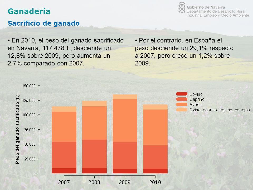 Ganadería Sacrificio de ganado En 2010, el peso del ganado sacrificado en Navarra, 117.478 t., desciende un 12,8% sobre 2009, pero aumenta un 2,7% com