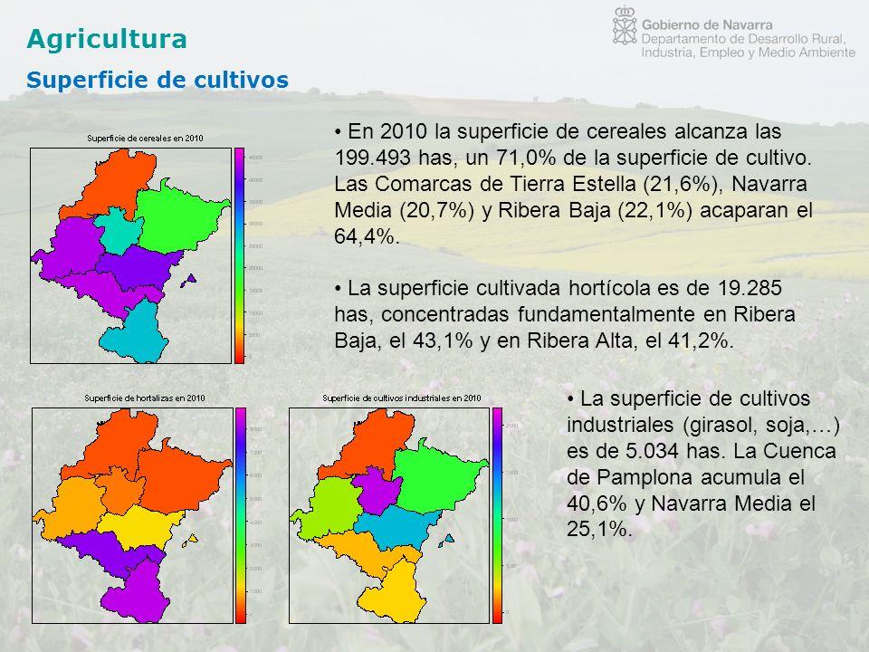 Agricultura Superficie de cultivos En 2010 la superficie de cereales alcanza las 199.493 has, un 71,0% de la superficie de cultivo. Las Comarcas de Ti