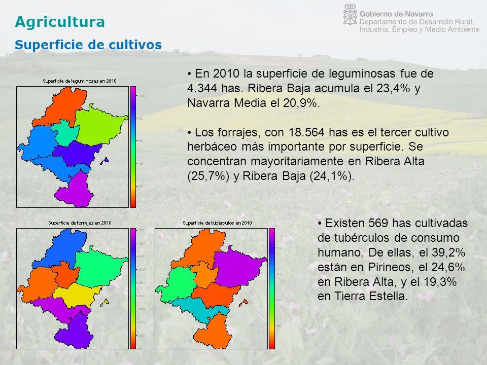 Agricultura Superficie de cultivos En 2010 la superficie de leguminosas fue de 4.344 has. Ribera Baja acumula el 23,4% y Navarra Media el 20,9%. Los f