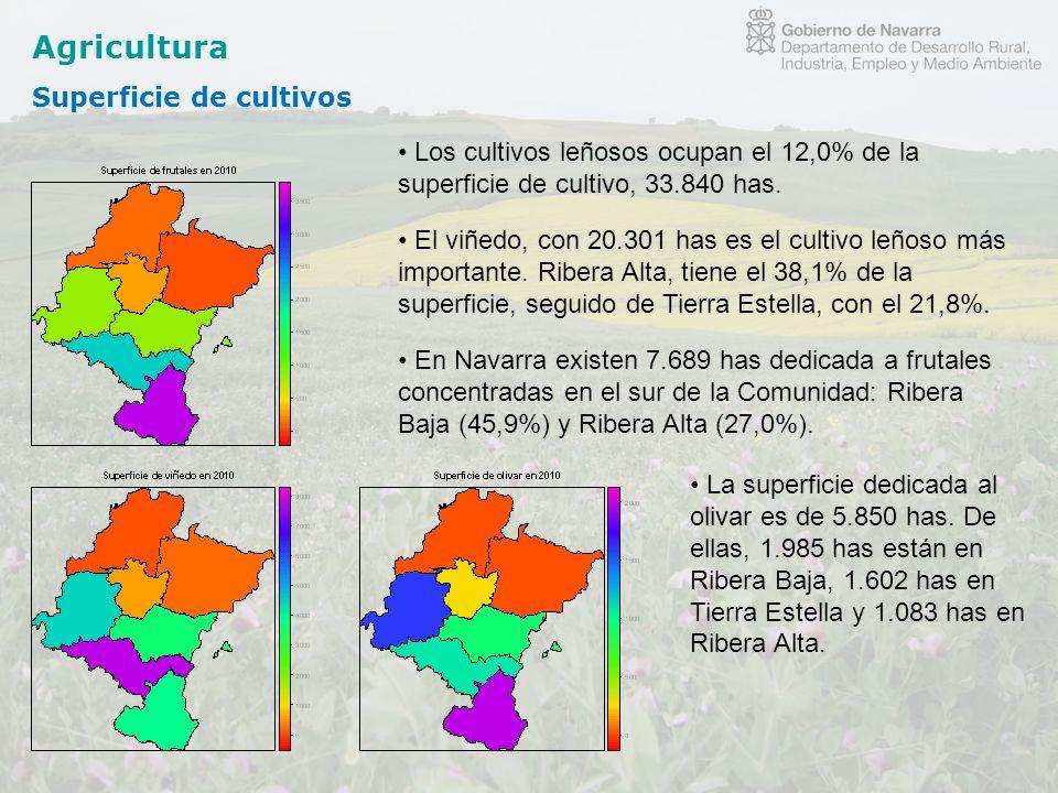 Agricultura Superficie de cultivos Los cultivos leñosos ocupan el 12,0% de la superficie de cultivo, 33.840 has. El viñedo, con 20.301 has es el culti