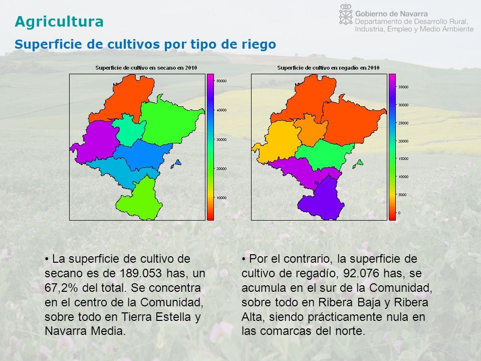 Agricultura Superficie de cultivos por tipo de riego La superficie de cultivo de secano es de 189.053 has, un 67,2% del total. Se concentra en el cent