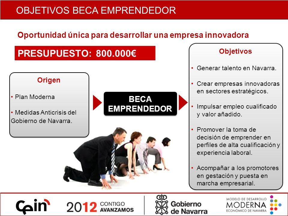 Introducción Ayudas Económicas 30 becas de hasta 18.000 para proyectos con un socio promotor con dedicación exclusiva.