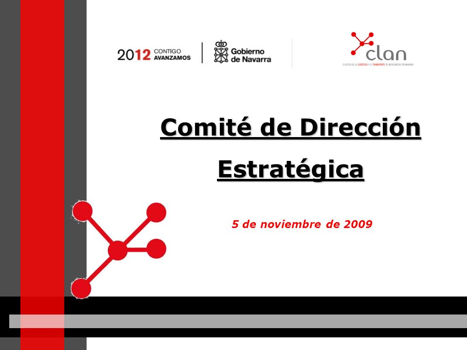 Comité de Dirección Estratégica 5 de noviembre de 2009