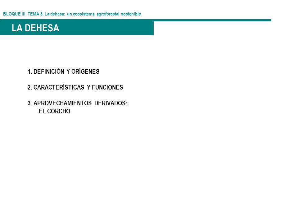 BLOQUE III. TEMA 8. La dehesa: un ecosistema agroforestal sostenible LA DEHESA 1. DEFINICIÓN Y ORÍGENES 2. CARACTERÍSTICAS Y FUNCIONES 3. APROVECHAMIE