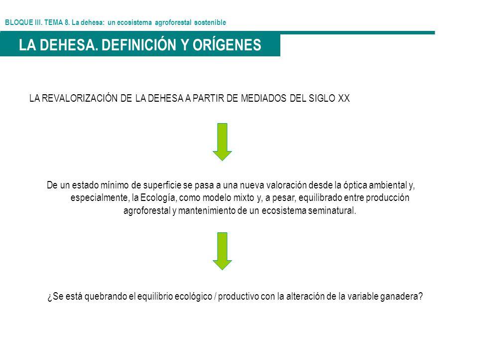 BLOQUE III. TEMA 8. La dehesa: un ecosistema agroforestal sostenible LA DEHESA. DEFINICIÓN Y ORÍGENES LA REVALORIZACIÓN DE LA DEHESA A PARTIR DE MEDIA