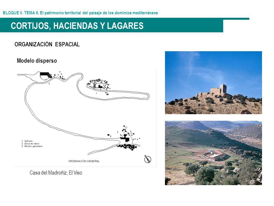 BLOQUE II. TEMA 6. El patrimonio territorial del paisaje de los dominios mediterráneos CORTIJOS, HACIENDAS Y LAGARES ORGANIZACIÓN ESPACIAL Modelo disp