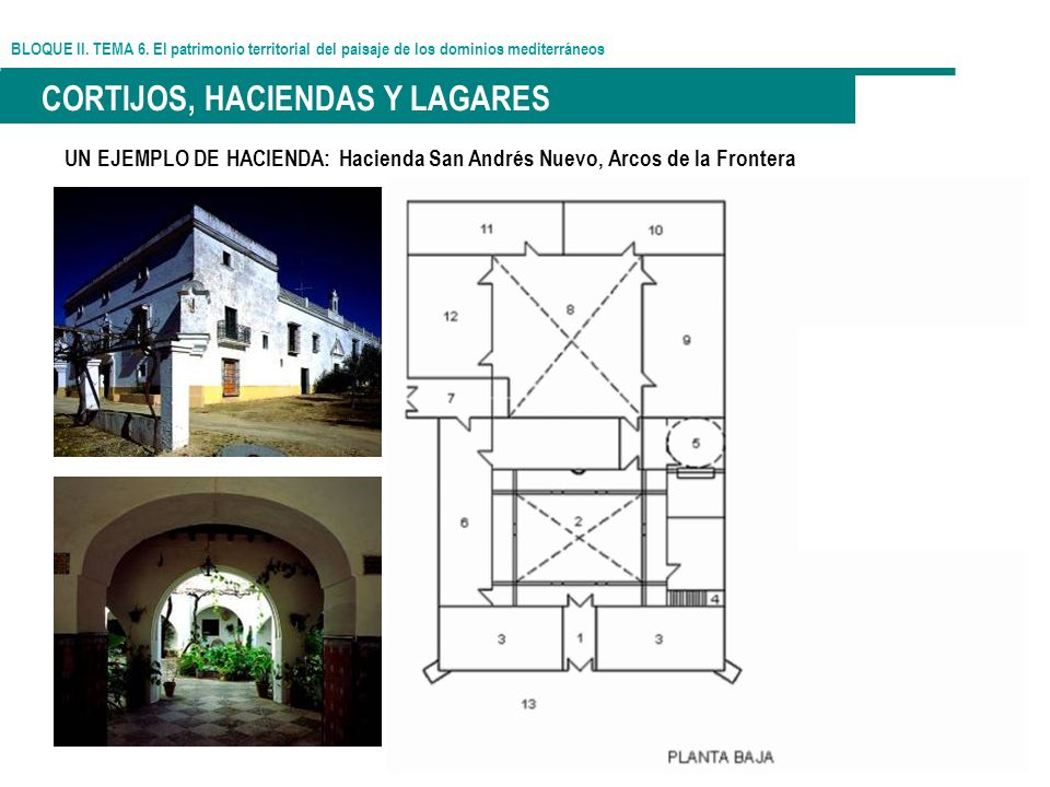 BLOQUE II. TEMA 6. El patrimonio territorial del paisaje de los dominios mediterráneos CORTIJOS, HACIENDAS Y LAGARES UN EJEMPLO DE HACIENDA: Hacienda