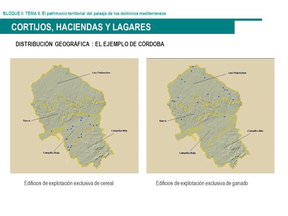 BLOQUE II. TEMA 6. El patrimonio territorial del paisaje de los dominios mediterráneos CORTIJOS, HACIENDAS Y LAGARES DISTRIBUCIÓN GEOGRÁFICA : EL EJEM