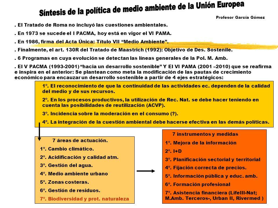El Tratado de Roma no incluyó las cuestiones ambientales..