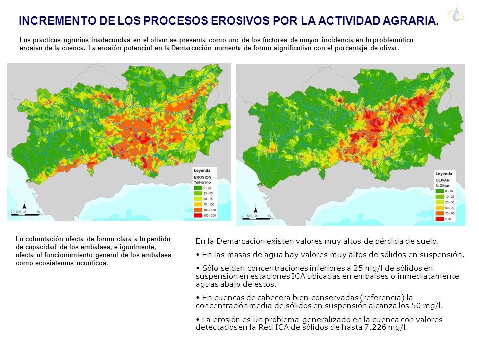 INCREMENTO DE LOS PROCESOS EROSIVOS POR LA ACTIVIDAD AGRARIA. Las practicas agrarias inadecuadas en el olivar se presenta como uno de los factores de