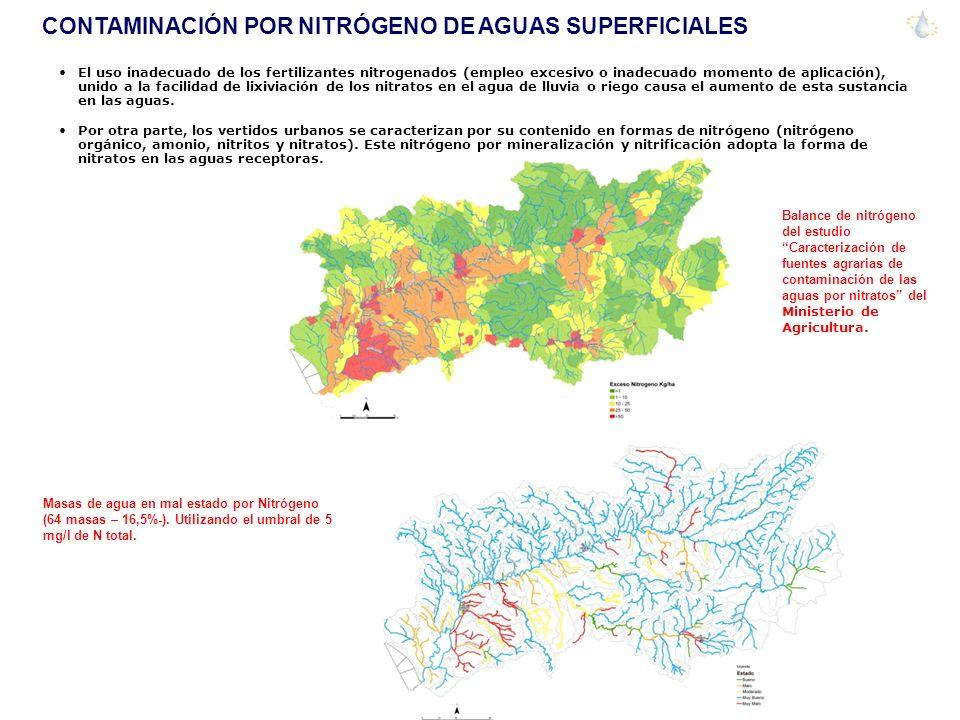 CONTAMINACIÓN POR NITRÓGENO DE AGUAS SUPERFICIALES El uso inadecuado de los fertilizantes nitrogenados (empleo excesivo o inadecuado momento de aplica