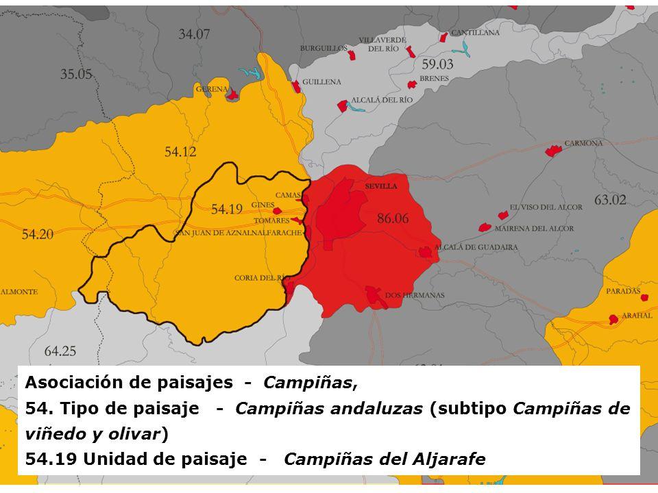 RECURSOS NATURALES, PATRIMONIO Y PAISAJE EN LA ORDENACIÓN DEL TERRITORIO Asociación de paisajes - Campiñas, 54. Tipo de paisaje - Campiñas andaluzas (