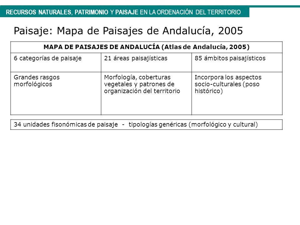 RECURSOS NATURALES, PATRIMONIO Y PAISAJE EN LA ORDENACIÓN DEL TERRITORIO Paisaje: Mapa de Paisajes de Andalucía, 2005 MAPA DE PAISAJES DE ANDALUCÍA (A