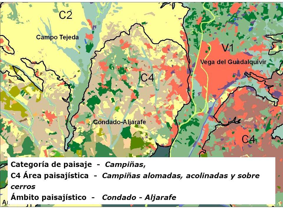RECURSOS NATURALES, PATRIMONIO Y PAISAJE EN LA ORDENACIÓN DEL TERRITORIO Categoría de paisaje - Campiñas, C4 Área paisajística - Campiñas alomadas, ac