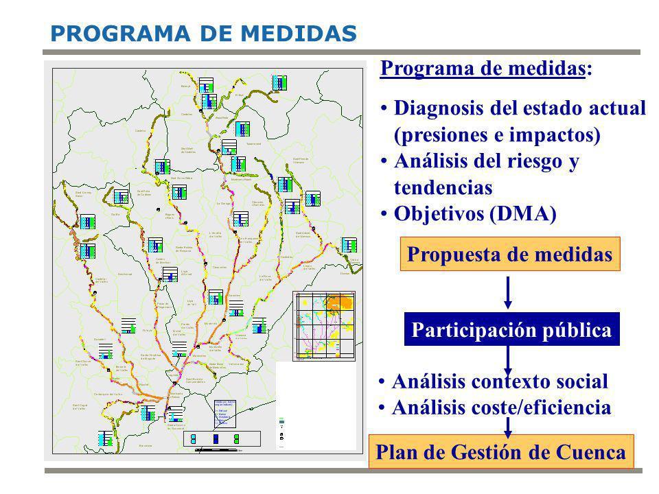 3 PROGRAMA DE MEDIDAS Programa de medidas: Diagnosis del estado actual (presiones e impactos) Análisis del riesgo y tendencias Objetivos (DMA) Participación pública Análisis contexto social Análisis coste/eficiencia Propuesta de medidas Plan de Gestión de Cuenca