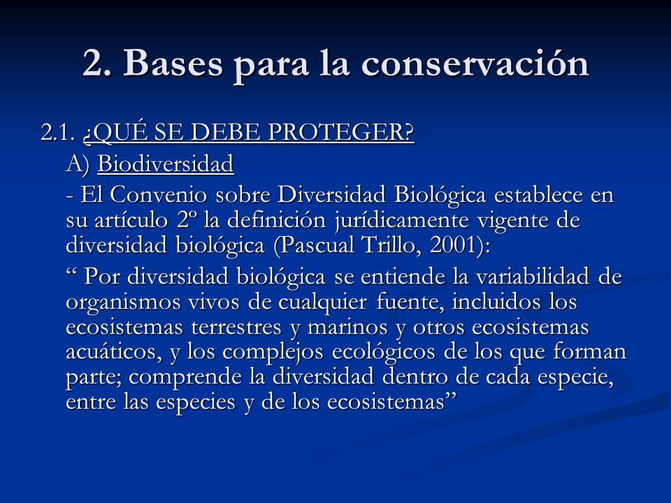 2. Bases para la conservación 2.1. ¿QUÉ SE DEBE PROTEGER? A) Biodiversidad - El Convenio sobre Diversidad Biológica establece en su artículo 2º la def