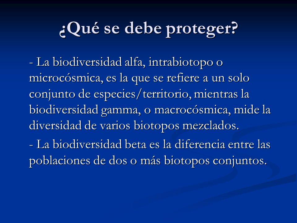 ¿Qué se debe proteger? - La biodiversidad alfa, intrabiotopo o microcósmica, es la que se refiere a un solo conjunto de especies/territorio, mientras