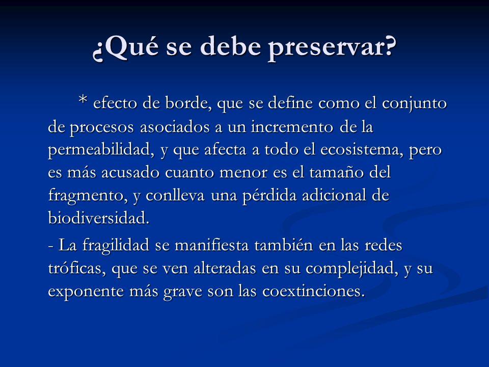 ¿Qué se debe preservar? * efecto de borde, que se define como el conjunto de procesos asociados a un incremento de la permeabilidad, y que afecta a to