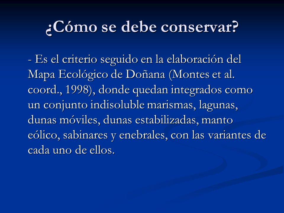 ¿Cómo se debe conservar? - Es el criterio seguido en la elaboración del Mapa Ecológico de Doñana (Montes et al. coord., 1998), donde quedan integrados