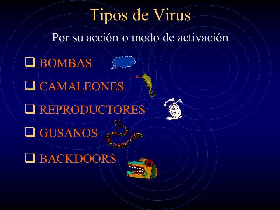 Tipos de Virus Según el medio y las técnicas para extenderse: Virus Residentes. Virus de Acción Directa. Virus de Sobreescritura. Virus de Boot. Virus