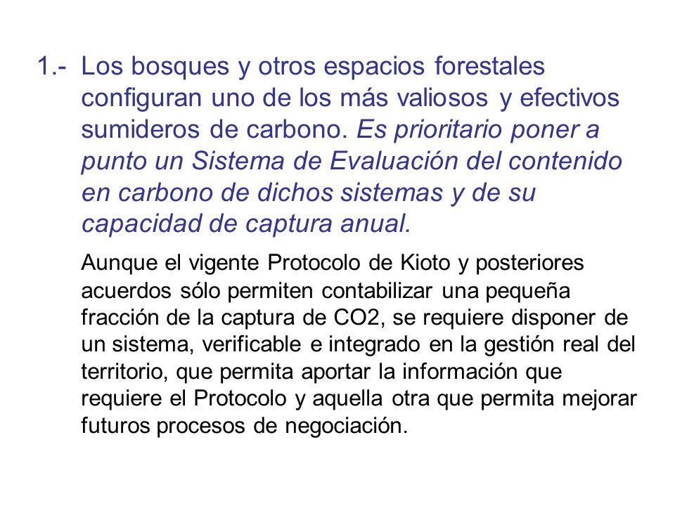 1.- Los bosques y otros espacios forestales configuran uno de los más valiosos y efectivos sumideros de carbono. Es prioritario poner a punto un Siste