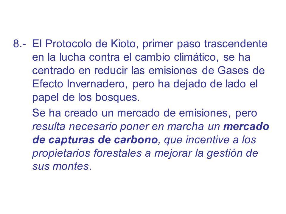 8.- El Protocolo de Kioto, primer paso trascendente en la lucha contra el cambio climático, se ha centrado en reducir las emisiones de Gases de Efecto Invernadero, pero ha dejado de lado el papel de los bosques.