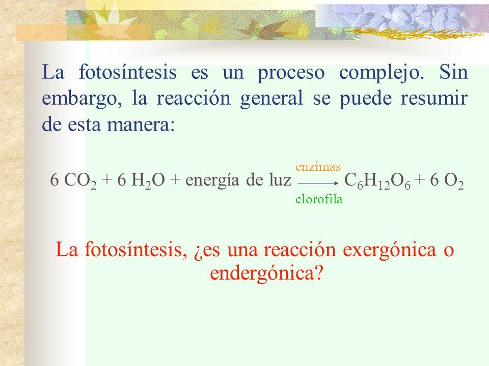 La fotosíntesis es un proceso complejo. Sin embargo, la reacción general se puede resumir de esta manera: 6 CO 2 + 6 H 2 O + energía de luz C 6 H 12 O