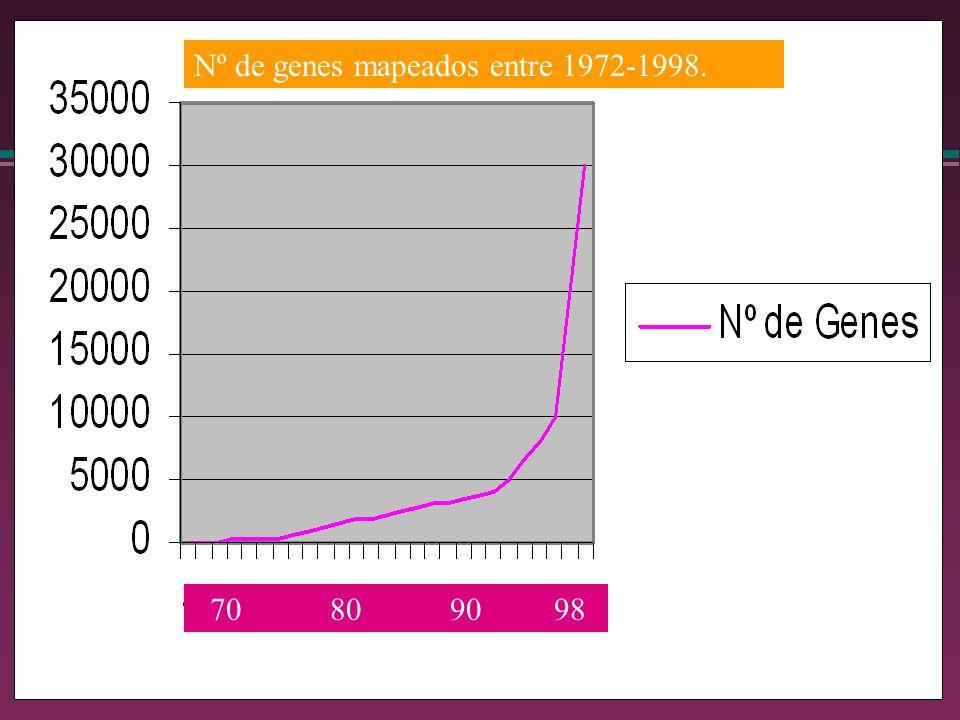 Nº de genes mapeados entre 1972-1998. 70 80 90 98