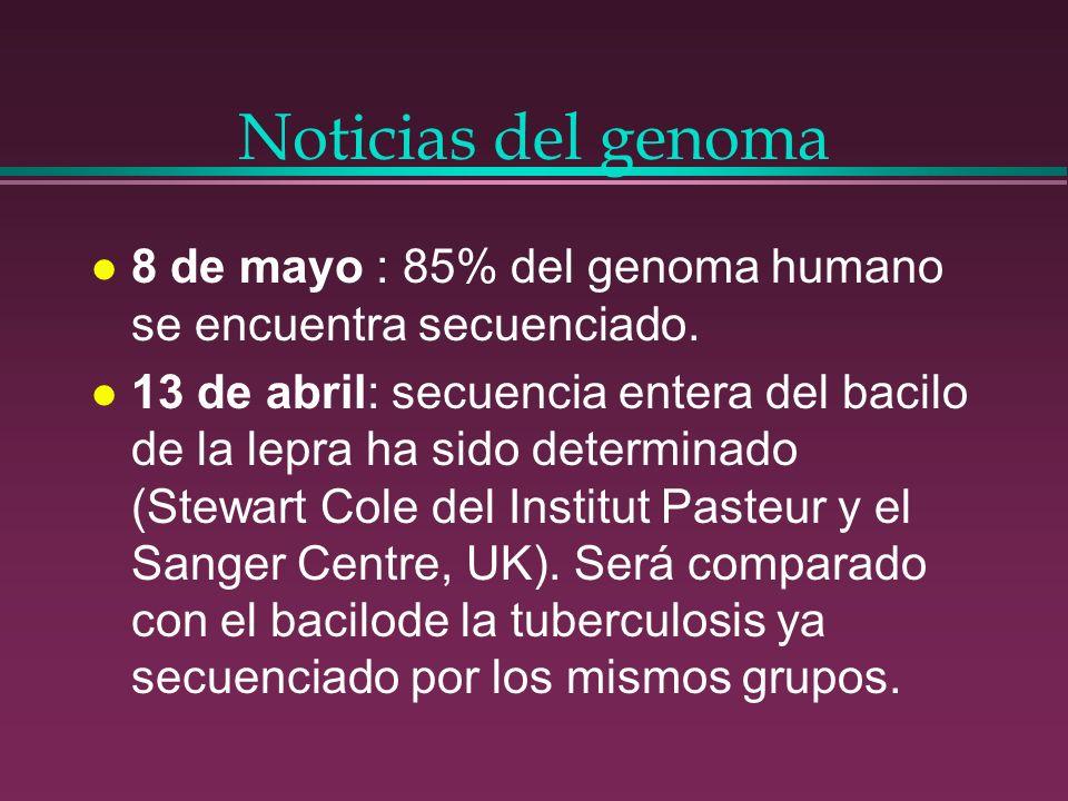 Noticias del genoma l 8 de mayo : 85% del genoma humano se encuentra secuenciado. l 13 de abril: secuencia entera del bacilo de la lepra ha sido deter