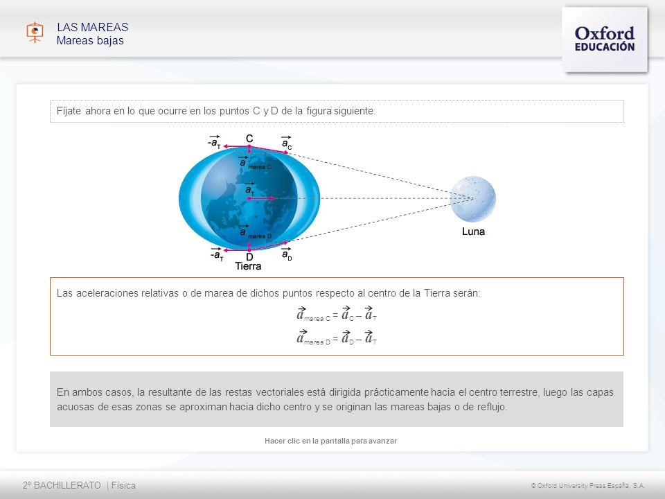 2º BACHILLERATO | Física © Oxford University Press España, S.A. Hacer clic en la pantalla para avanzar LAS MAREAS Mareas bajas Fíjate ahora en lo que