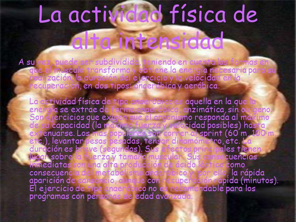 La actividad física de alta intensidad A su vez, puede ser subdividida, teniendo en cuenta las formas en que el músculo transforma y obtiene la energí
