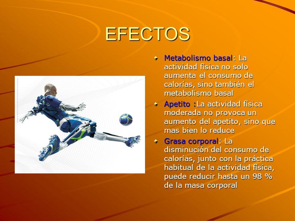 EFECTOS Metabolismo basal: La actividad física no solo aumenta el consumo de calorías, sino también el metabolismo basal Apetito :La actividad física