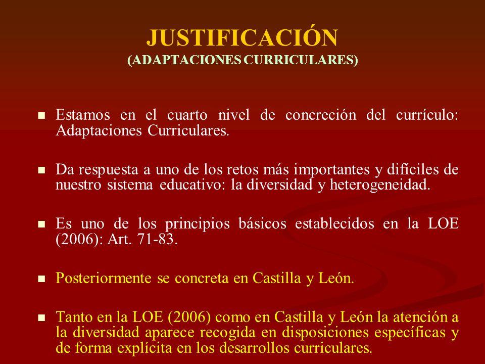 ATENCIÓN DIVERSIDAD CyL (De forma general) Plan Marco de Atención a la Diversidad (Acuerdo de 18 diciembre de 2003, de la Junta de Castilla y León): Plan específico de Atención al Alumnado Extranjero y de Minorías.