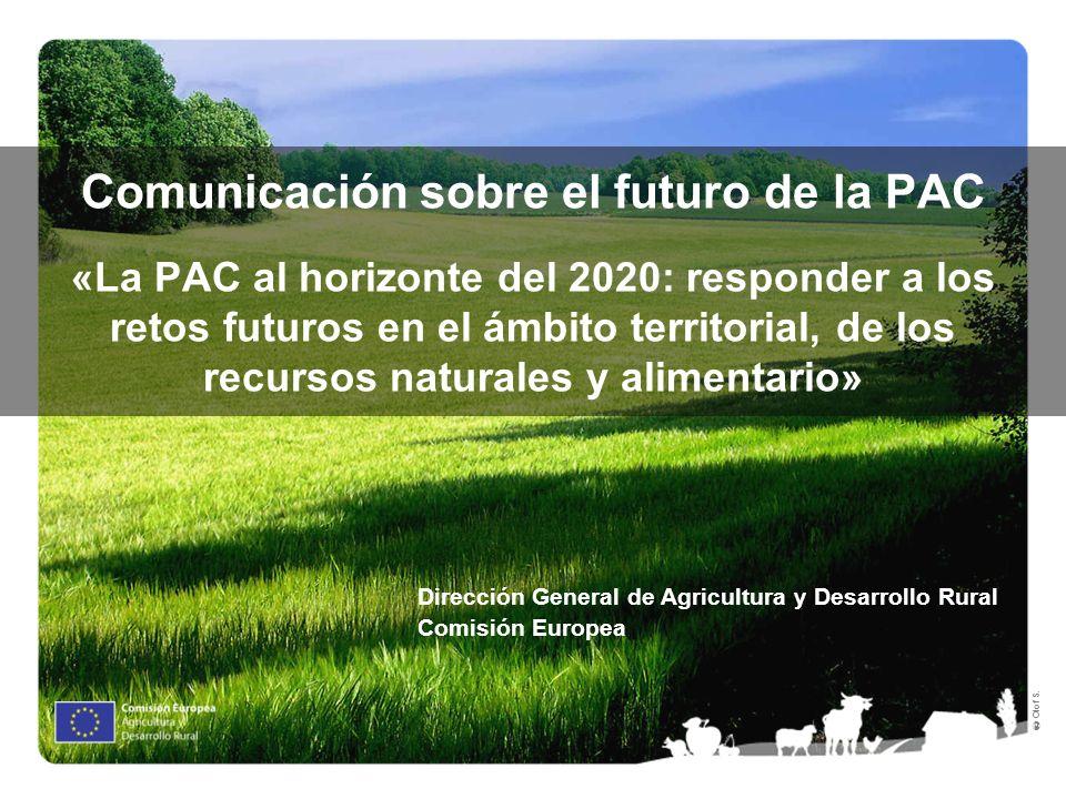 Olof S. Comunicación sobre el futuro de la PAC «La PAC al horizonte del 2020: responder a los retos futuros en el ámbito territorial, de los recursos