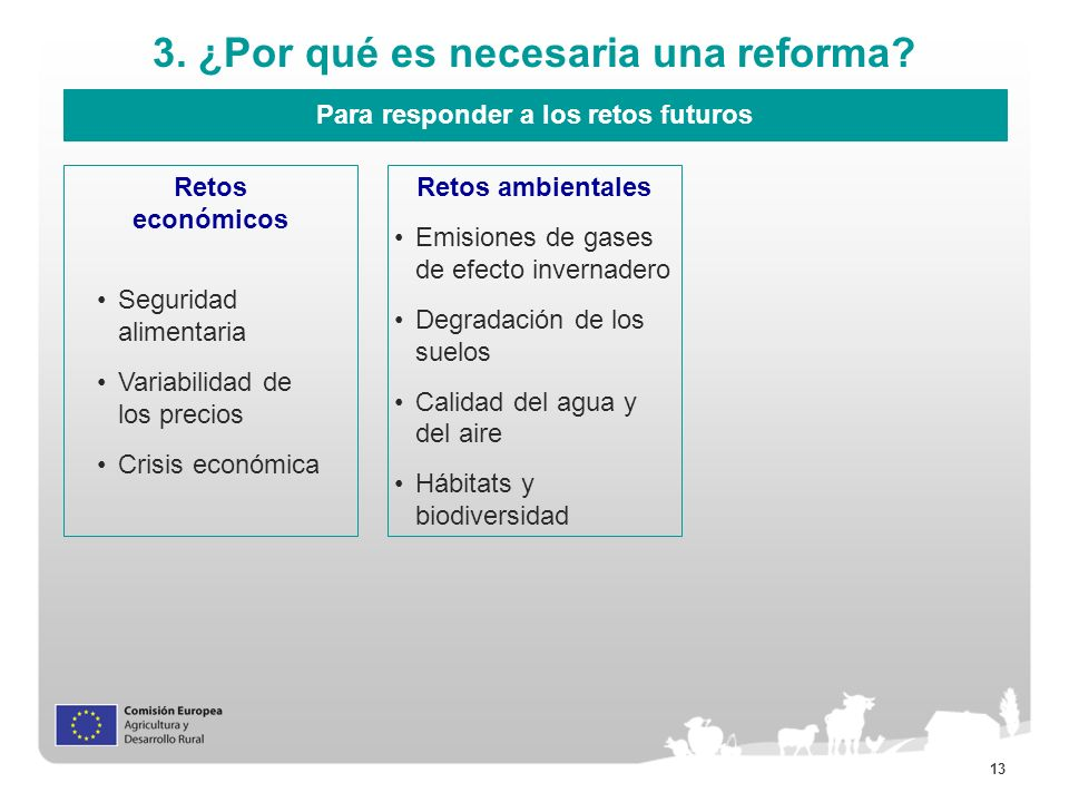 13 3. ¿Por qué es necesaria una reforma? Para responder a los retos futuros Retos económicos Retos ambientales Seguridad alimentaria Variabilidad de l