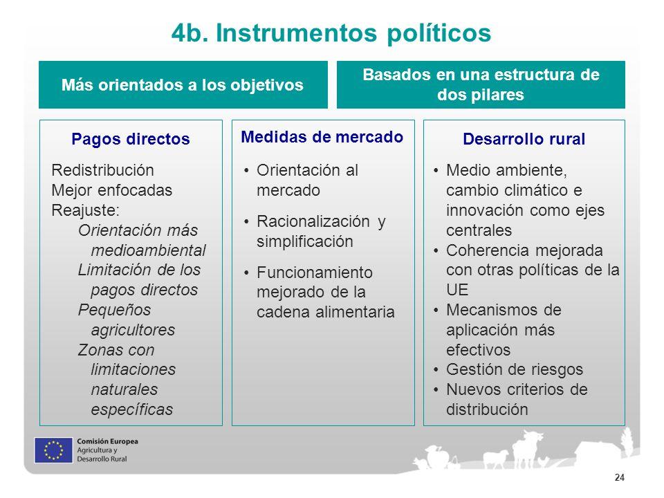 24 4b. Instrumentos políticos Más orientados a los objetivos Basados en una estructura de dos pilares Pagos directos Medidas de mercado Desarrollo rur