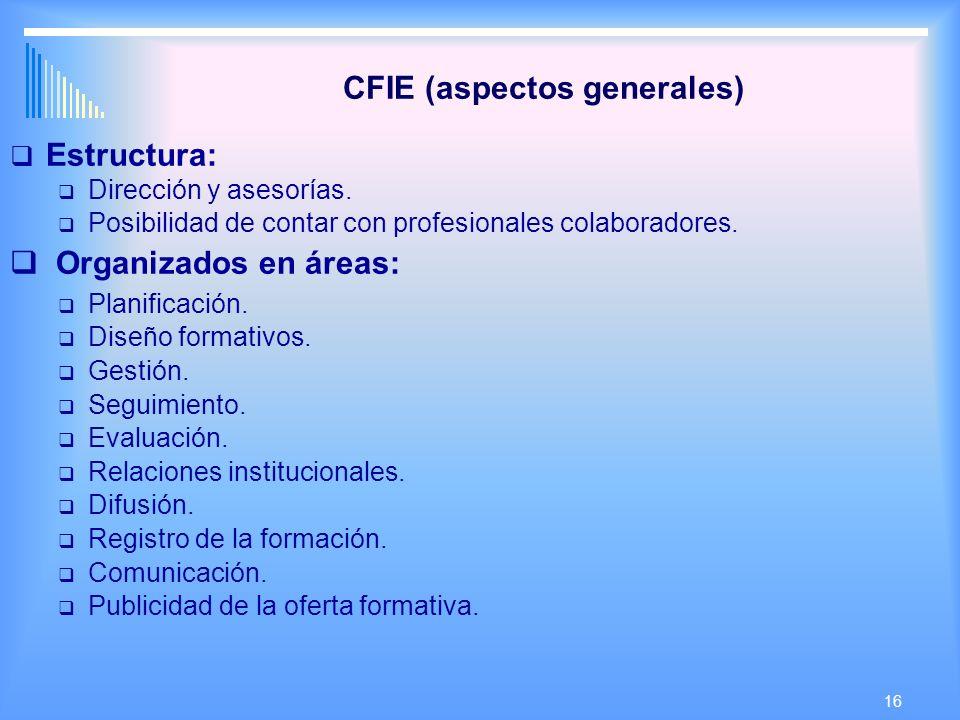 16 CFIE (aspectos generales) Estructura: Dirección y asesorías.