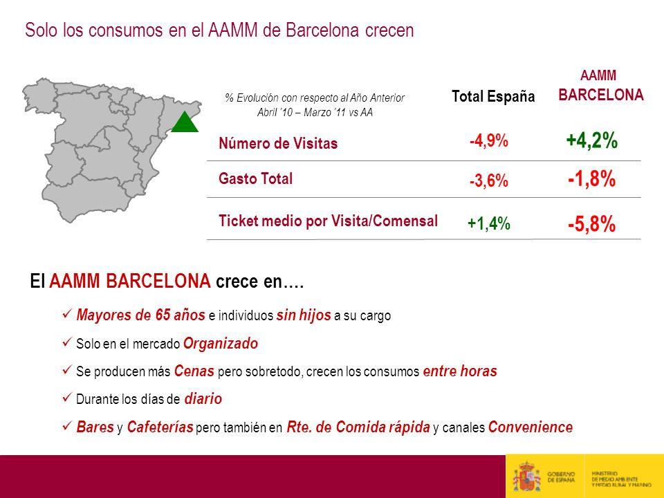Gasto Total Número de Visitas Total España -3,6% -4,9% % Evolución con respecto al Año Anterior Abril 10 – Marzo 11 vs AA +1,4% Ticket medio por Visit