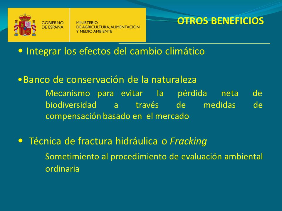 OTROS BENEFICIOS Integrar los efectos del cambio climático Banco de conservación de la naturaleza Mecanismo para evitar la pérdida neta de biodiversid