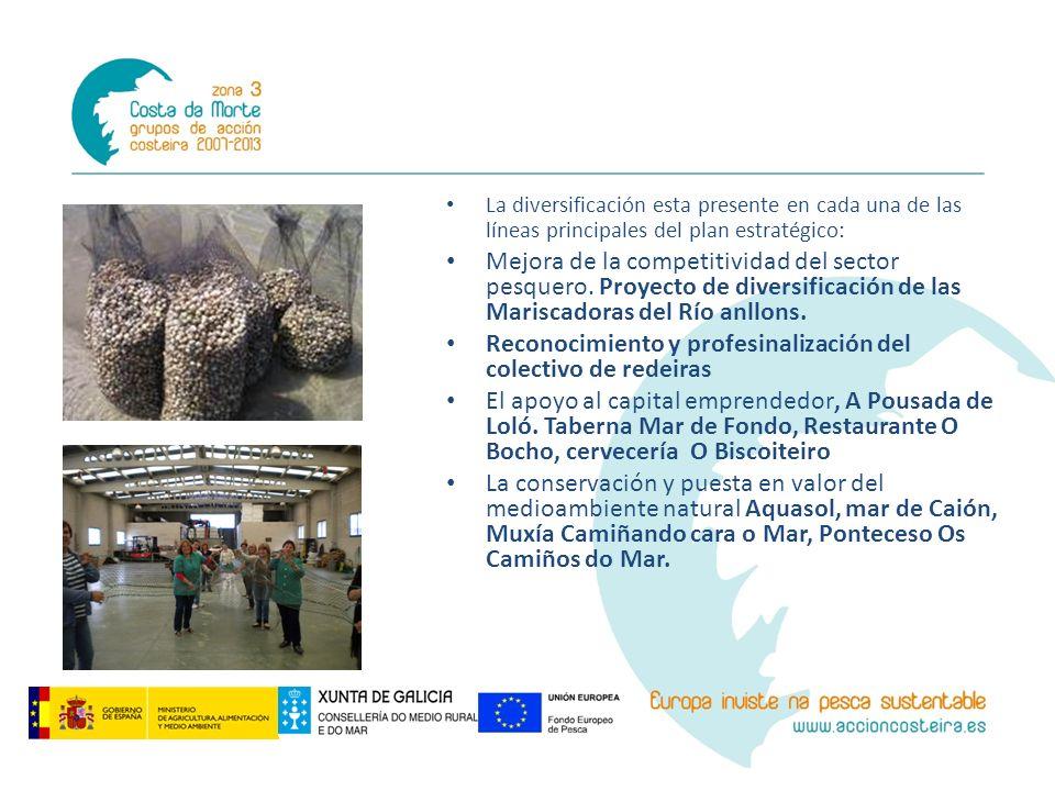 La diversificación esta presente en cada una de las líneas principales del plan estratégico: Mejora de la competitividad del sector pesquero. Proyecto