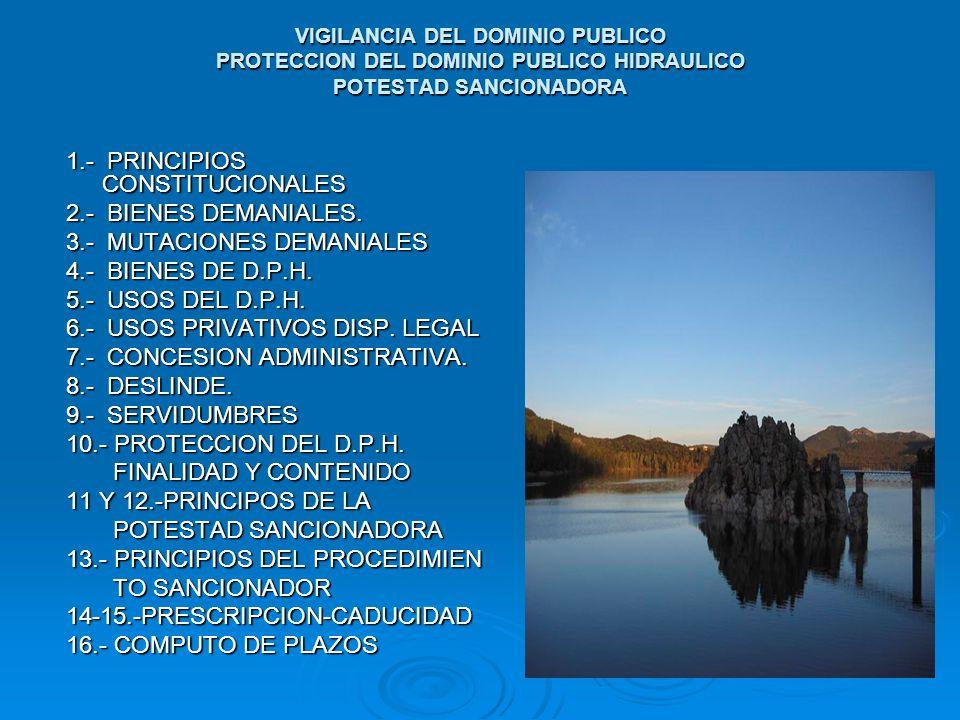 VIGILANCIA DEL DOMINIO PUBLICO PROTECCION DEL DOMINIO PUBLICO HIDRAULICO POTESTAD SANCIONADORA 1.- PRINCIPIOS CONSTITUCIONALES 2.- BIENES DEMANIALES.