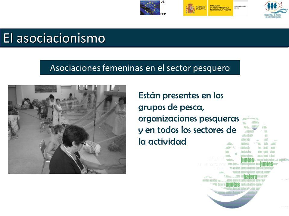 El asociacionismo Asociaciones femeninas en el sector pesquero Están presentes en los grupos de pesca, organizaciones pesqueras y en todos los sectores de la actividad