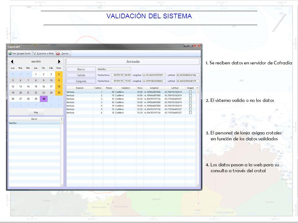 Barco VALIDACIÓN DEL SISTEMA 1. Se reciben datos en servidor de Cofradía 2. El sistema valida o no los datos 3. El personal de lonja asigna crotales e