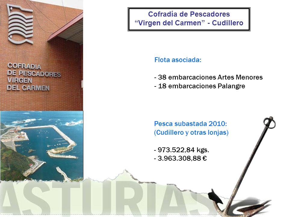 Cofradía de Pescadores Virgen del Carmen - Cudillero Flota asociada: - 38 embarcaciones Artes Menores - 18 embarcaciones Palangre Pesca subastada 2010