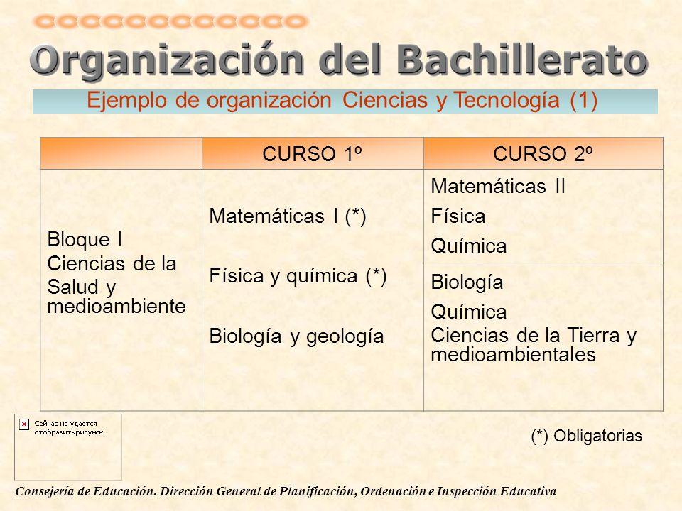 Consejería de Educación. Dirección General de Planificación, Ordenación e Inspección Educativa CURSO 1ºCURSO 2º Bloque I Ciencias de la Salud y medioa