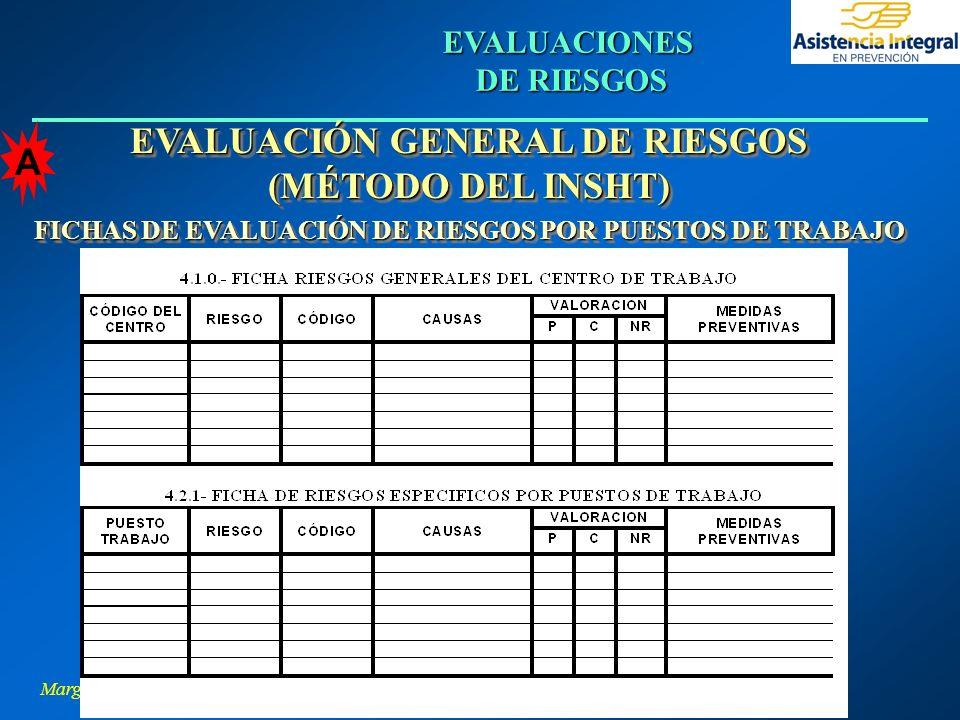 Margarita L. Hernández Pino EVALUACIONES DE RIESGOS EVALUACIÓN GENERAL DE RIESGOS (MÉTODO DEL INSHT) FICHAS DE EVALUACIÓN DE RIESGOS POR PUESTOS DE TR