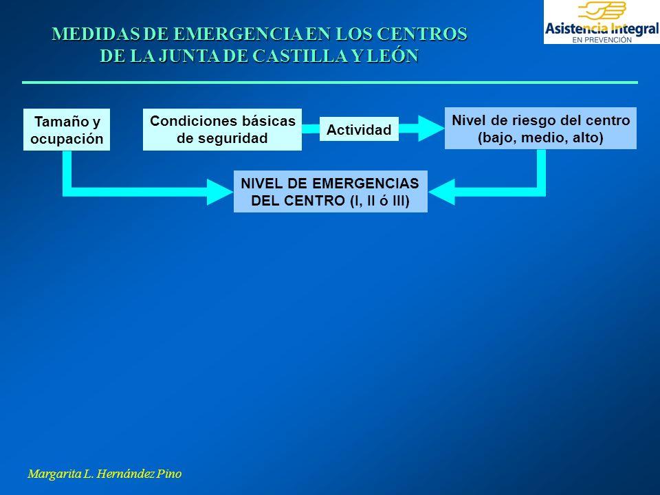 Margarita L. Hernández Pino MEDIDAS DE EMERGENCIA EN LOS CENTROS DE LA JUNTA DE CASTILLA Y LEÓN NIVEL DE EMERGENCIAS DEL CENTRO (I, II ó III) Tamaño y