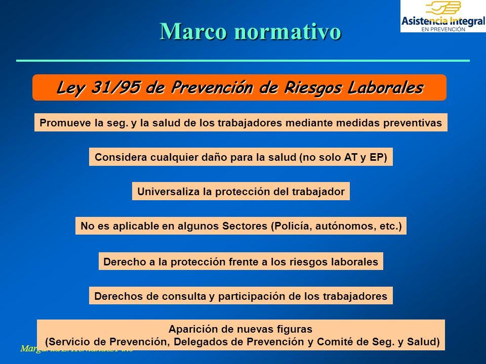 Margarita L. Hernández Pino Aparición de nuevas figuras (Servicio de Prevención, Delegados de Prevención y Comité de Seg. y Salud) Considera cualquier