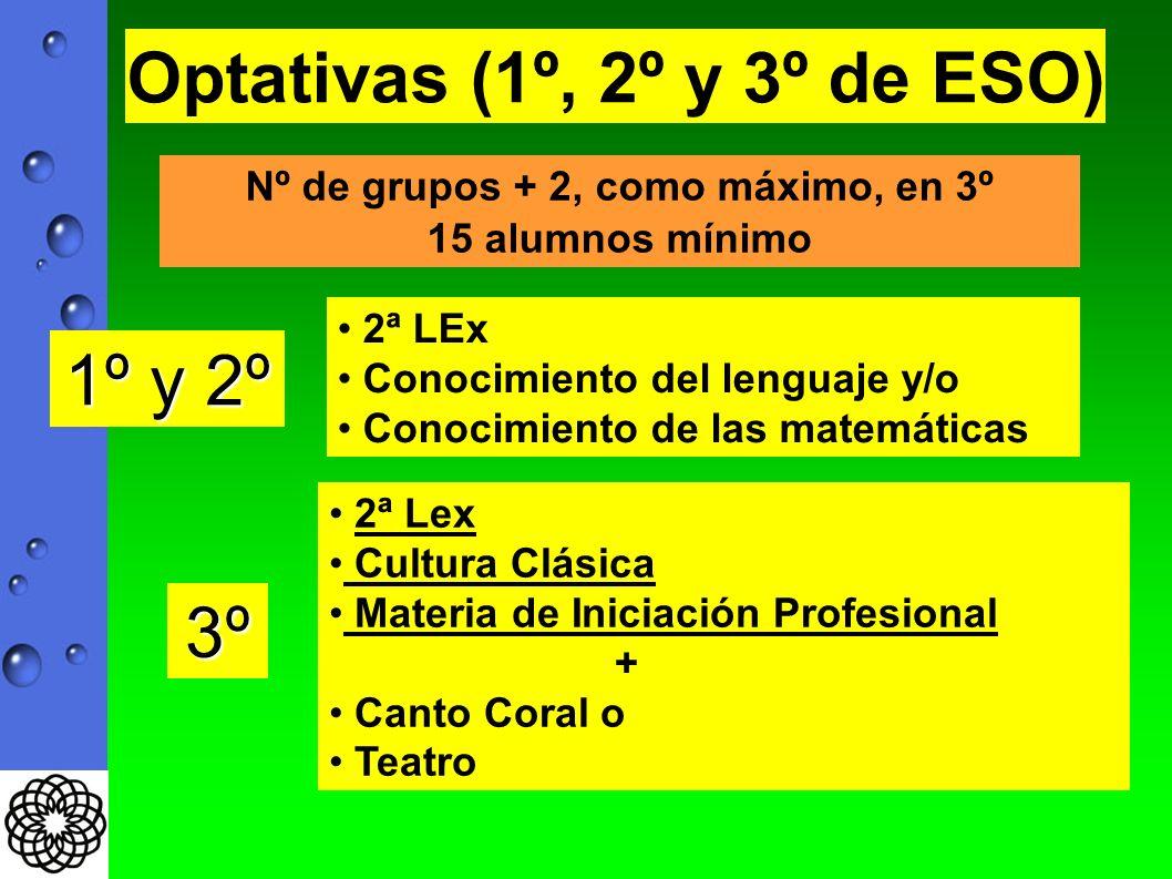 Optativas (1º, 2º y 3º de ESO) 1º y 2º 2ª LEx Conocimiento del lenguaje y/o Conocimiento de las matemáticas 3º 2ª Lex Cultura Clásica Materia de Iniciación Profesional + Canto Coral o Teatro Nº de grupos + 2, como máximo, en 3º 15 alumnos mínimo